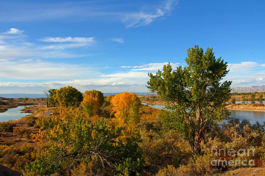 Colors Along The Colorado Photograph  - Colors Along The Colorado Fine Art Print