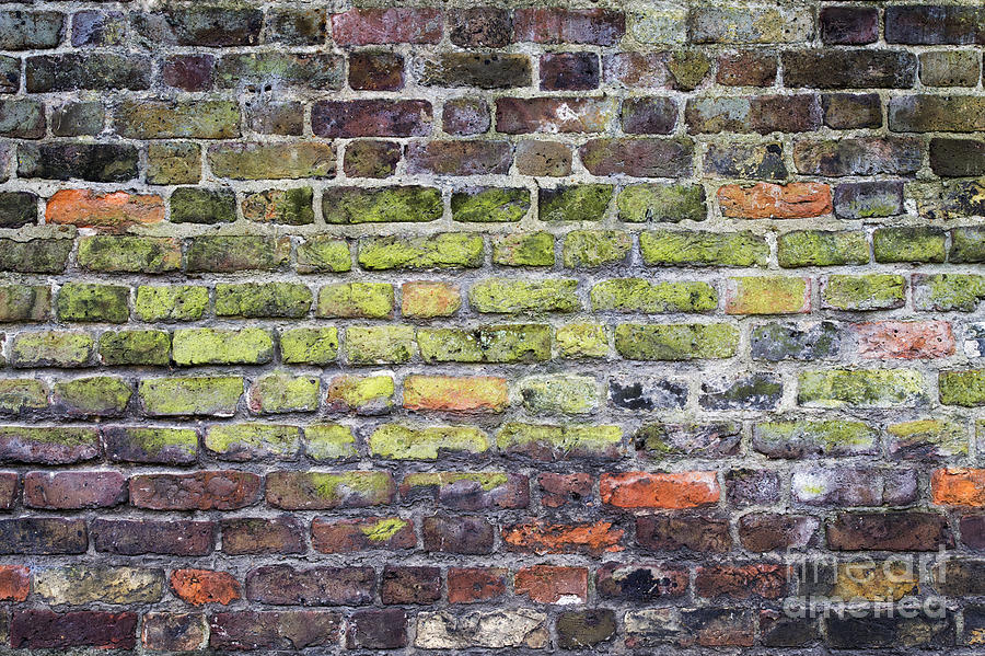 Colourful London Bricks Photograph