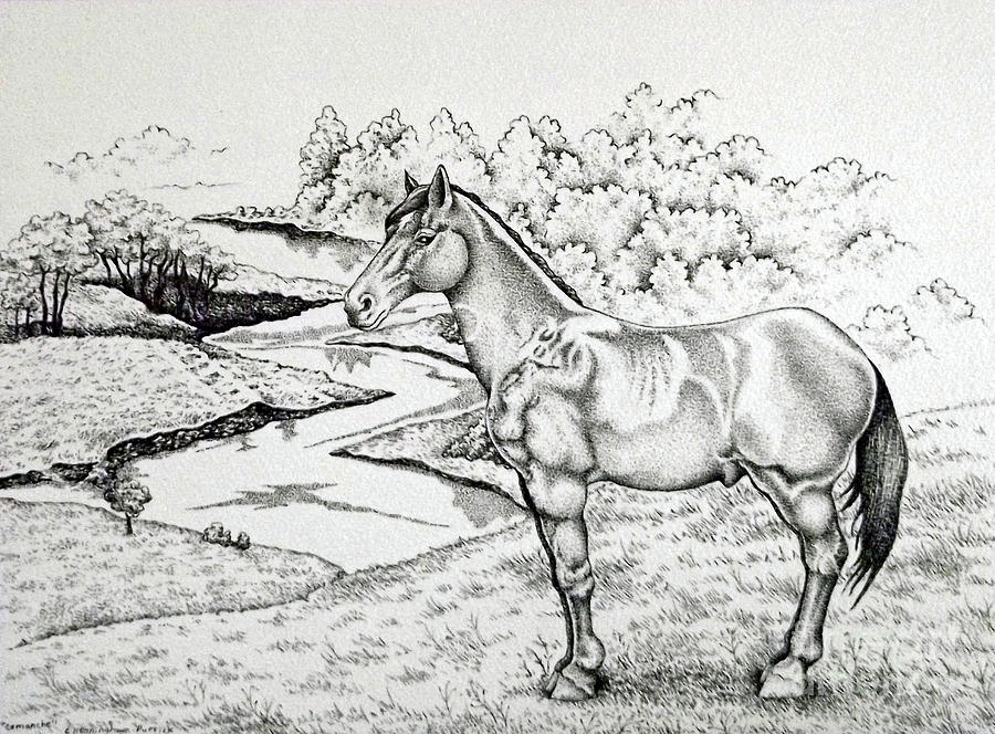 Comanche Ink Pointillism Study Drawing