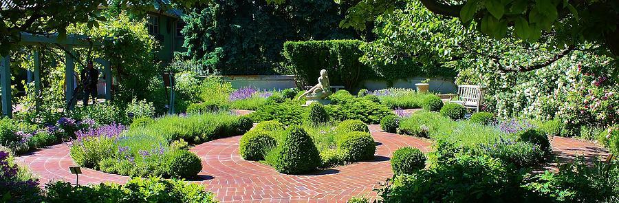 Come To My Garden Photograph