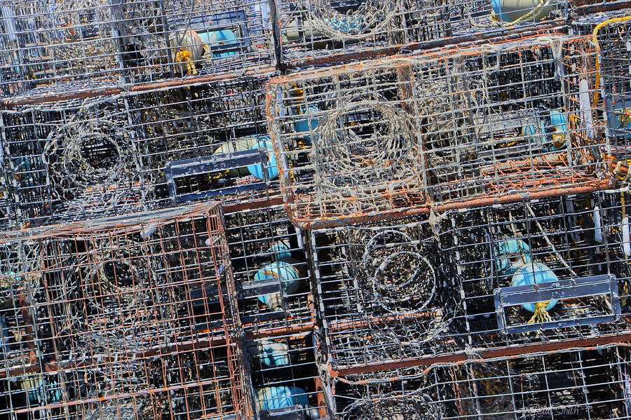 Commercial Fishing Pots Photograph