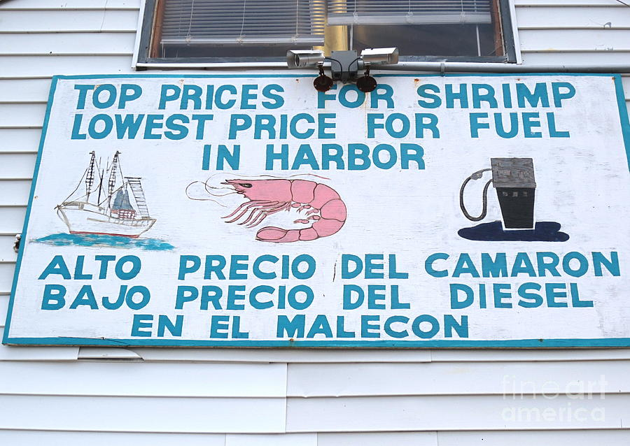 Commercial Shrimp Business In Ft Myers Florida Posted Sign Photograph