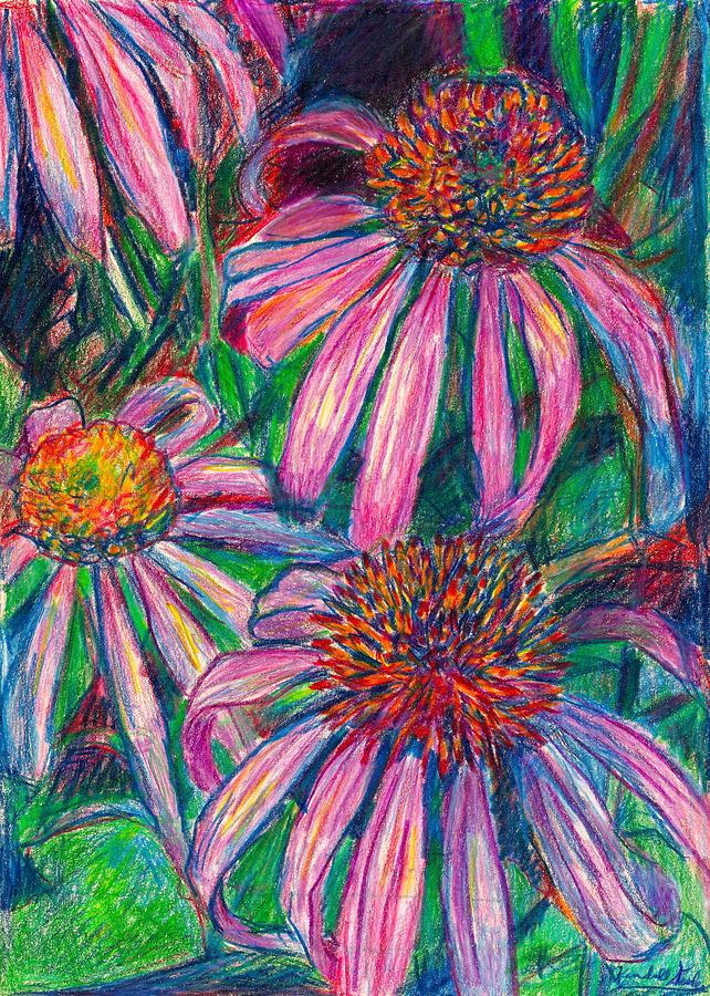 Coneflower Twirl Drawing  - Coneflower Twirl Fine Art Print