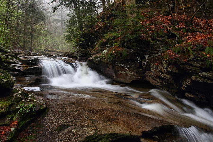 Conestoga Falls Photograph