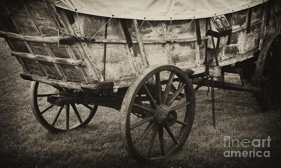 Conestoga Wagon Photograph
