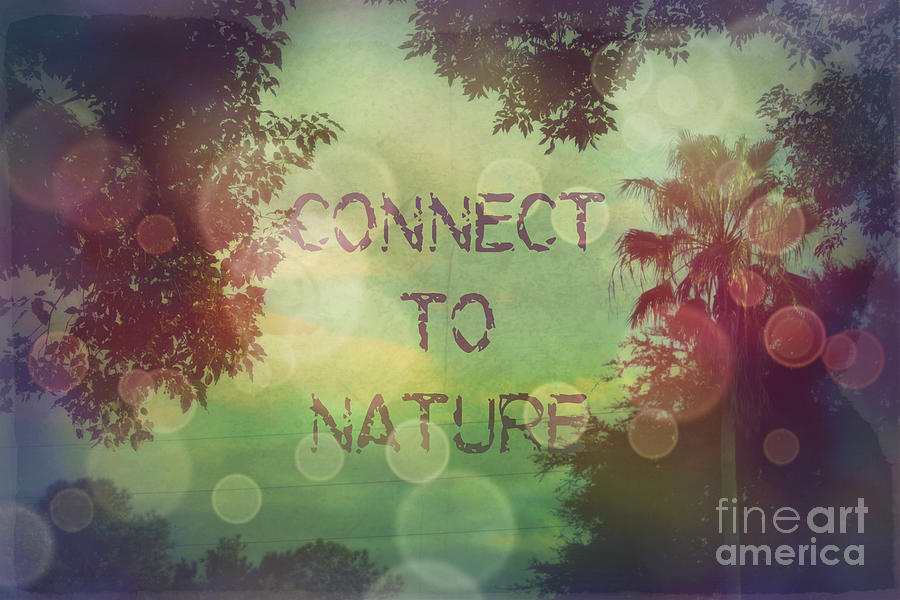 Connect To Nature Digital Art