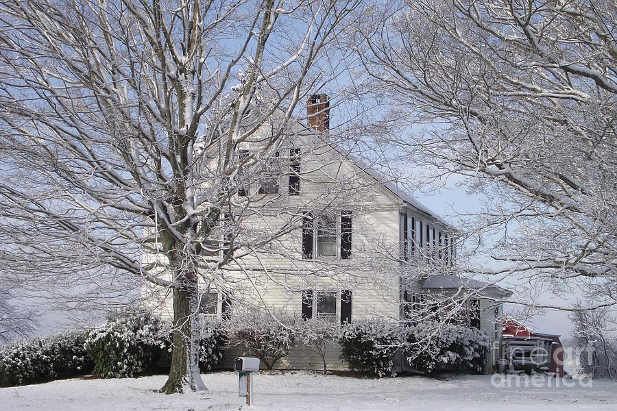 Connecticut Winter Photograph