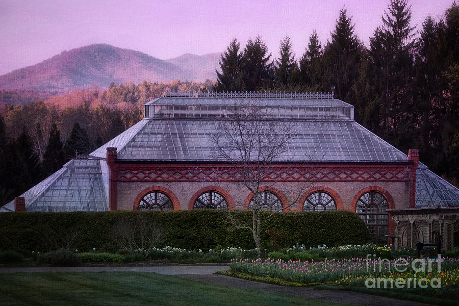 Conservatory At Biltmore Estate Photograph