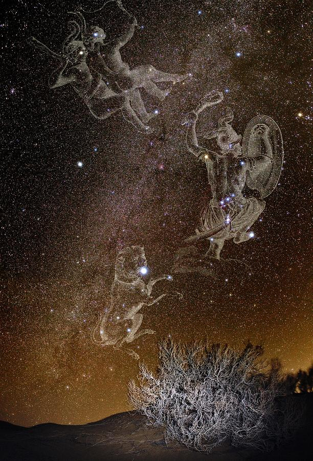 Constellations Over A Desert Photograph