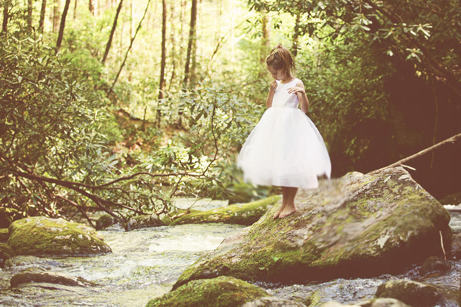 Moss Photograph - Contemplation by Kathleen Stevens Moore