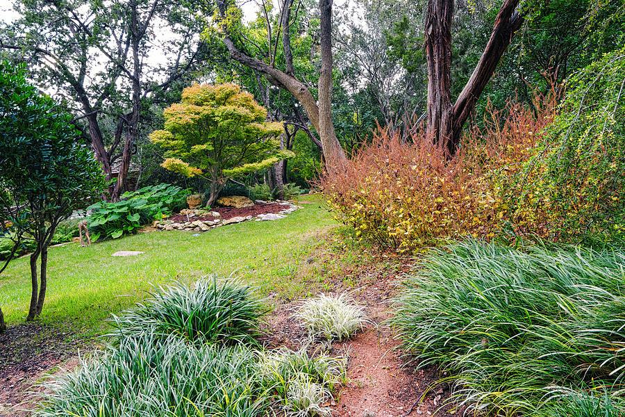 Contemplation Zilker Botanical Gardens Austin Texas