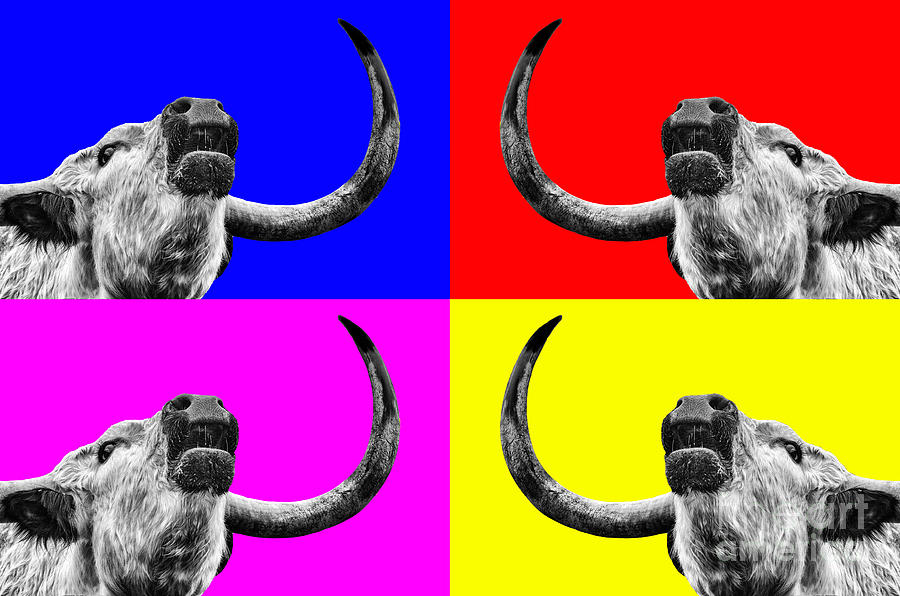 Coo Pop Art Too Photograph  - Coo Pop Art Too Fine Art Print