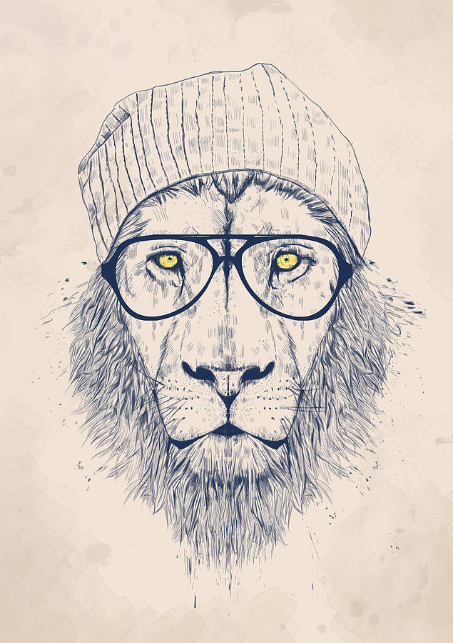 Cool Lion Drawing by Balazs Solti