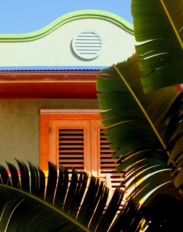 Tropical Photograph - Cool Tropics by Karen Wiles