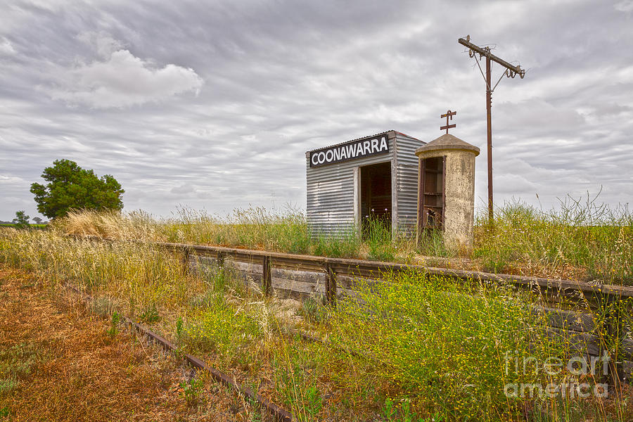 Coonawarra Station South Australia Photograph