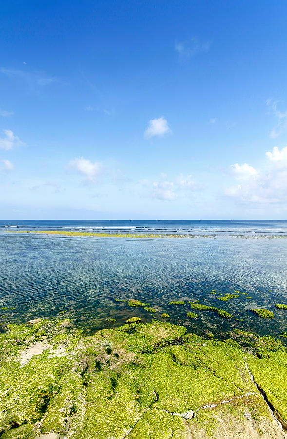 Coral Beach Bali In Clear Morning Weather Photograph  - Coral Beach Bali In Clear Morning Weather Fine Art Print