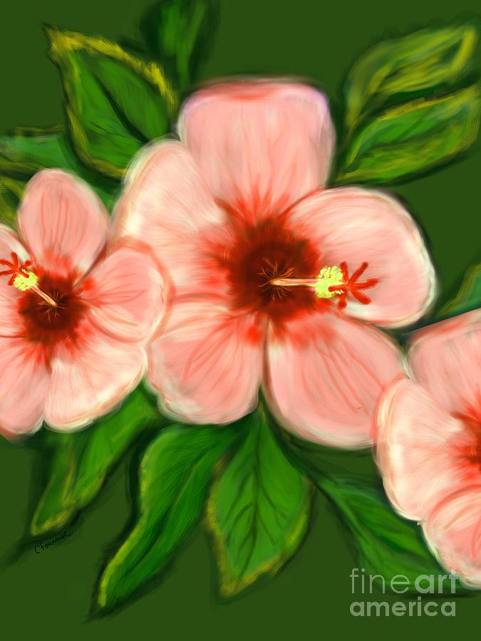 Coral Hibiscus  Digital Art