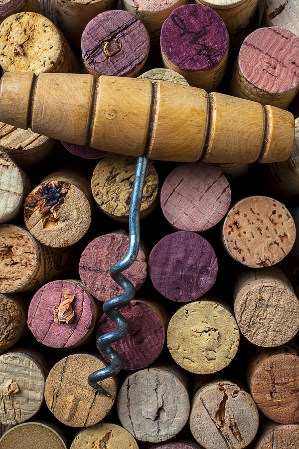 Corkscrew On Top Of Wine Corks Photograph