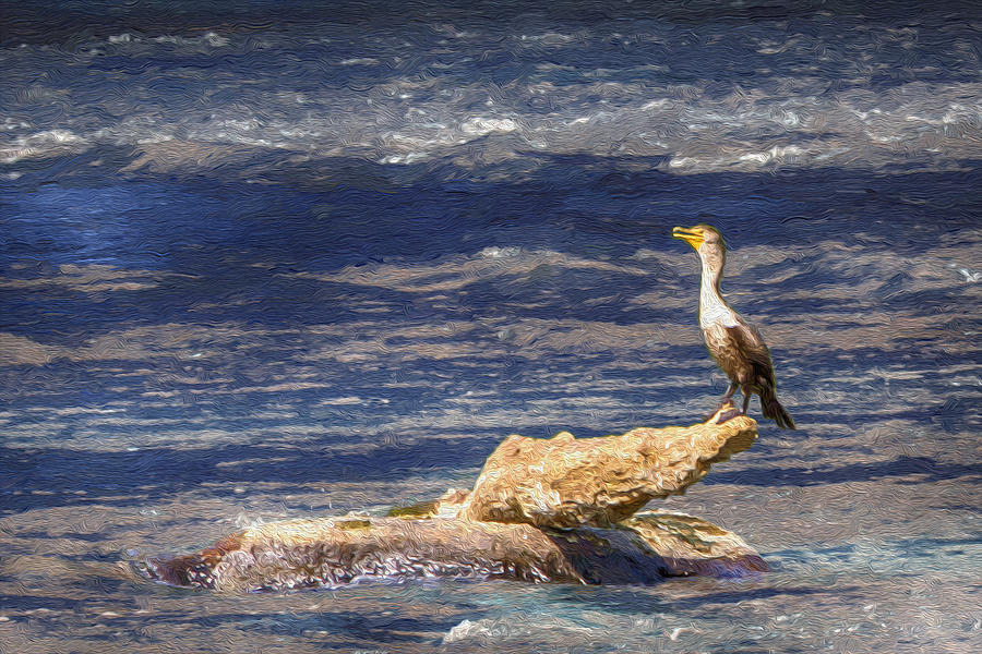 Cormorant fishing on the french broad river painting by for French broad river fishing