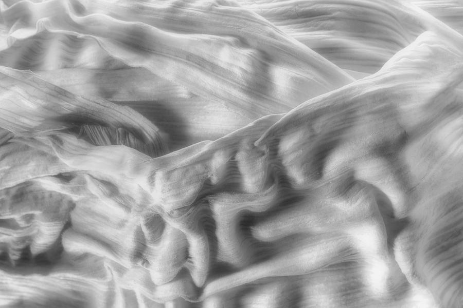 Abstract Photograph - Corn Husk - A Beautiful Chaos by Tom Mc Nemar