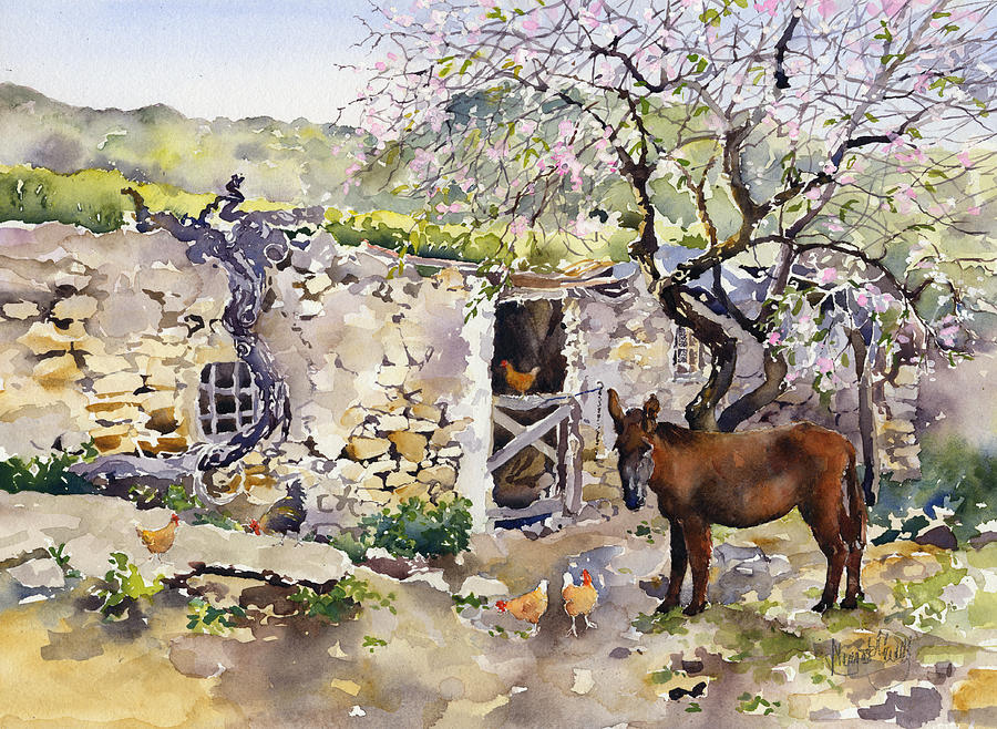 Donkey Painting - Corner Of Lucainena by Margaret Merry