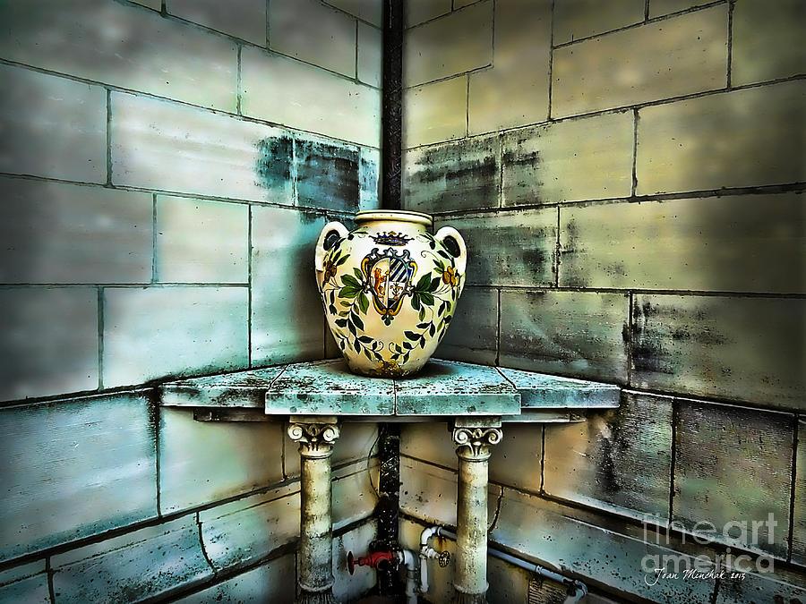 Corner Vase Photograph