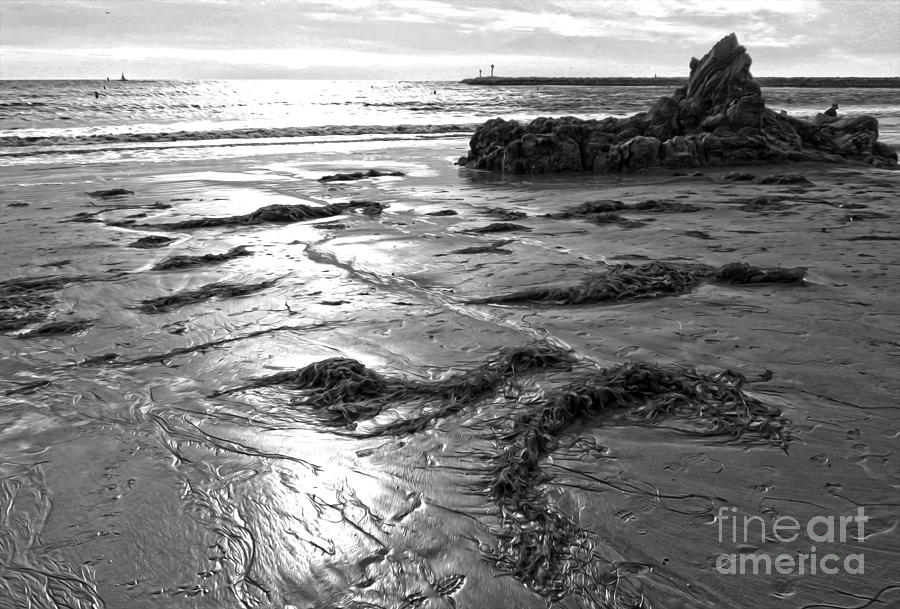 Corona Del Mar Coast - Black And Awhite Painting