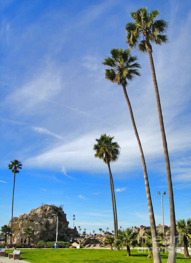 Corona Del Mar State Beach - 01 Photograph