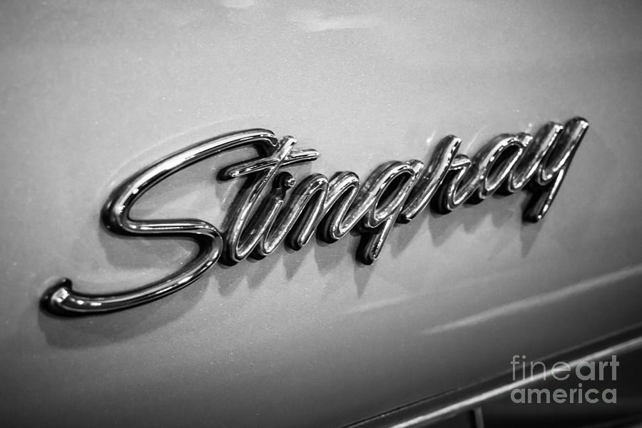 American Photograph - Corvette Stingray Emblem Black And White Picture by Paul Velgos