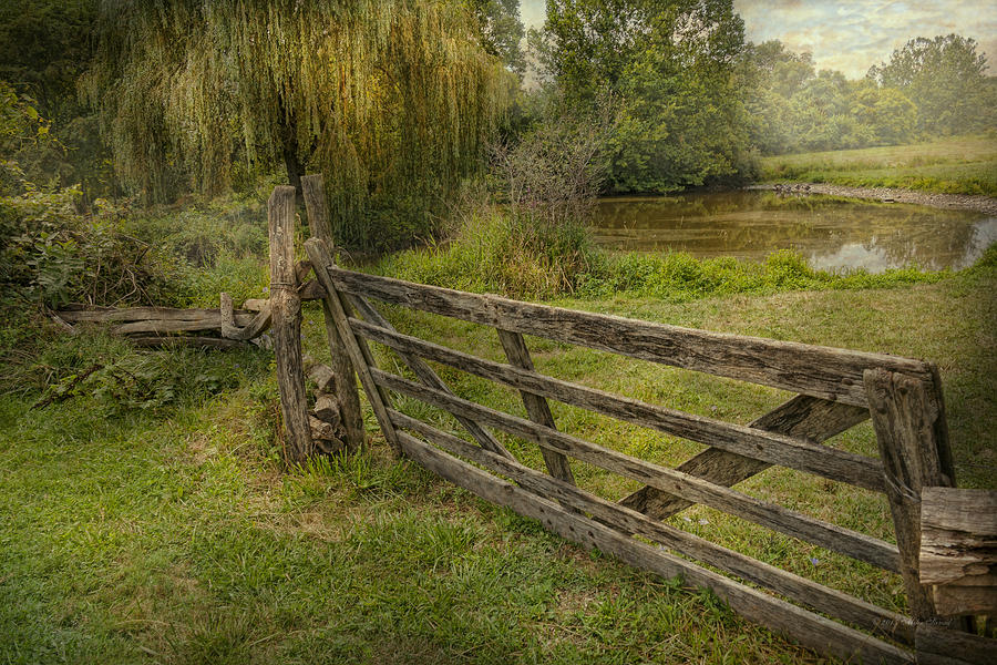 Savad Photograph - Country - Gate - Rural Simplicity  by Mike Savad