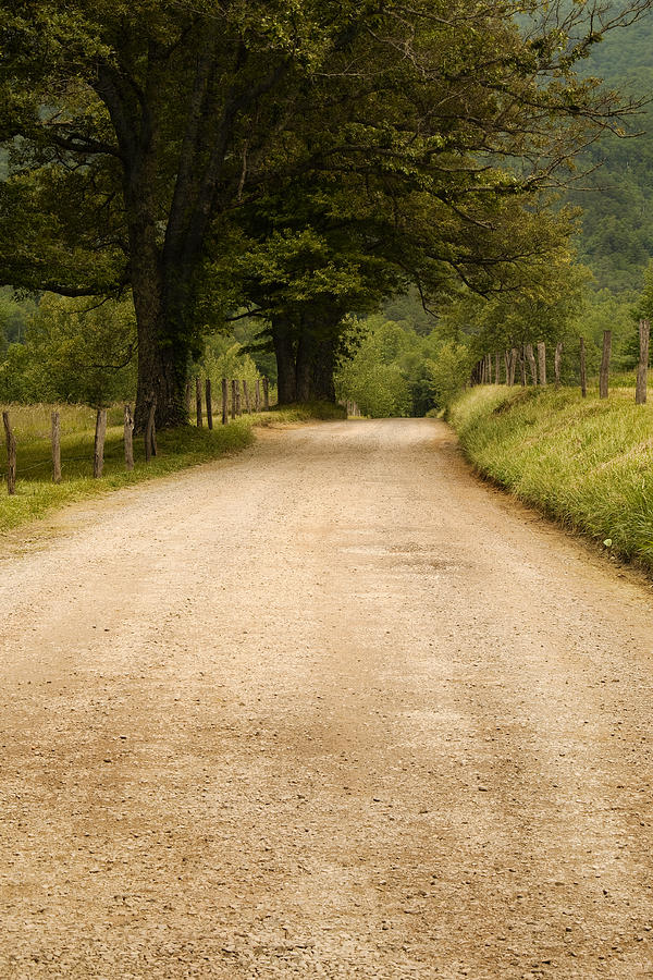 Country Lane - Smoky Mountains Photograph