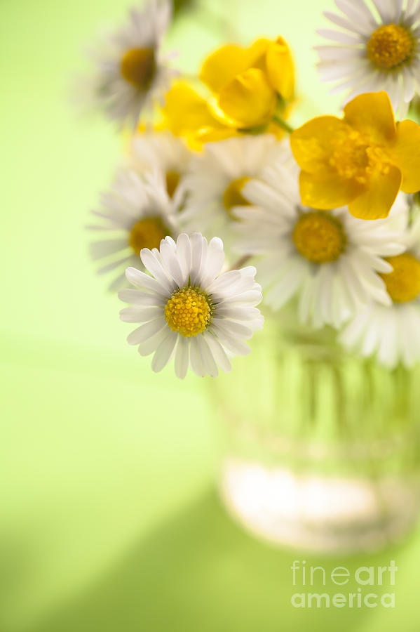 Flower Photograph - Country Posy by Jan Bickerton