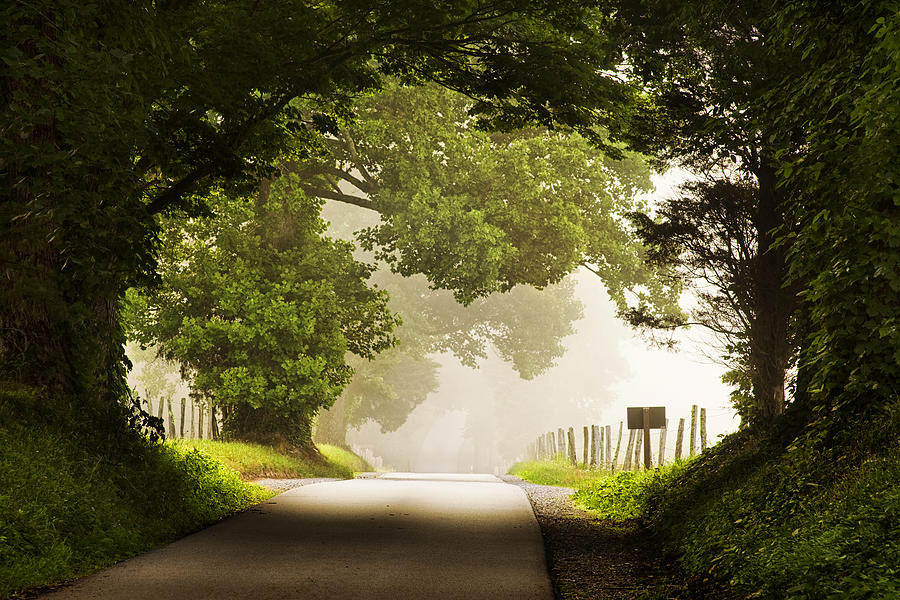 Country Road In The Smokies Photograph