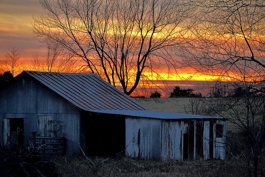 Country Sunrise Photograph by Deena Stoddard