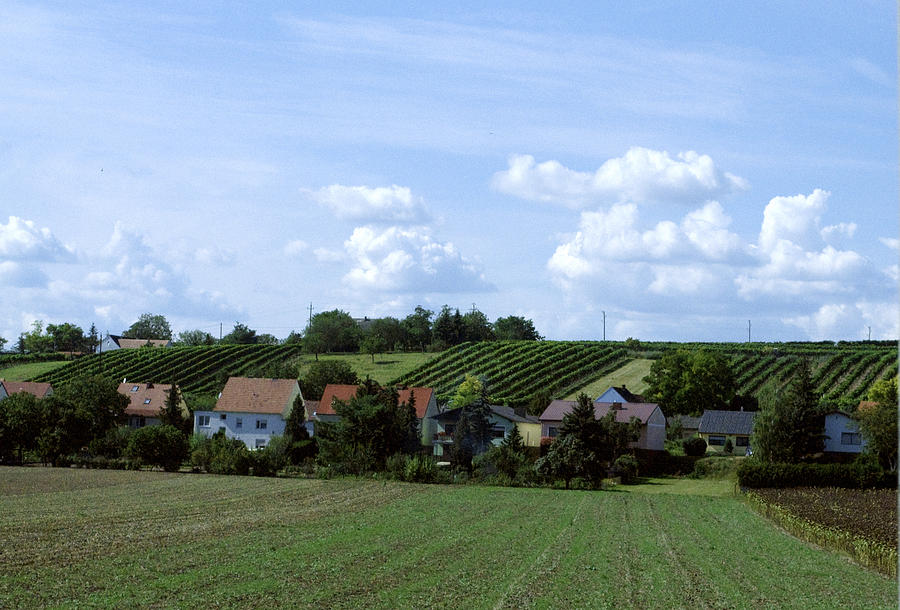 Prague Outskirts Image Photograph - Countryside by Haleh Mahbod