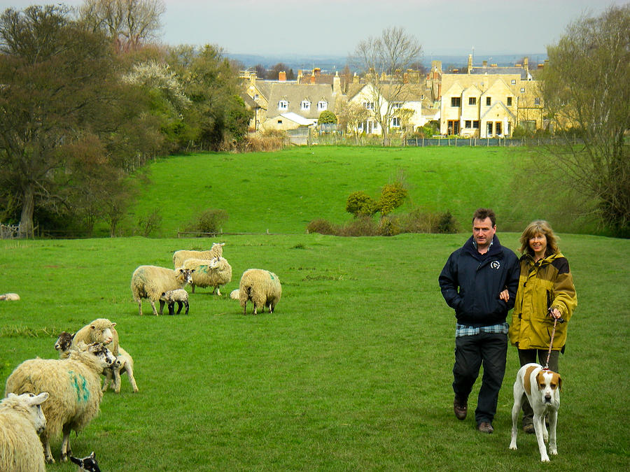 Couple With Dog On Cotswold Way Trail Through Green Pastures Near Broadway Village England Photograph