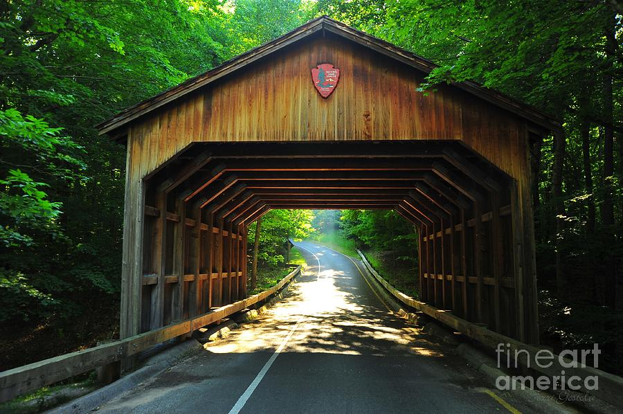 Bridge Photograph - Covered Bridge At Sleeping Bear Dunes National Lakeshore by Terri Gostola