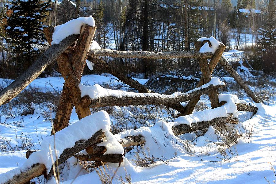 Wooden Fence Photograph - Covered In Snow by Fiona Kennard