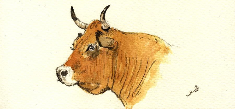 Ox Painting - Cow Head Study by Juan  Bosco