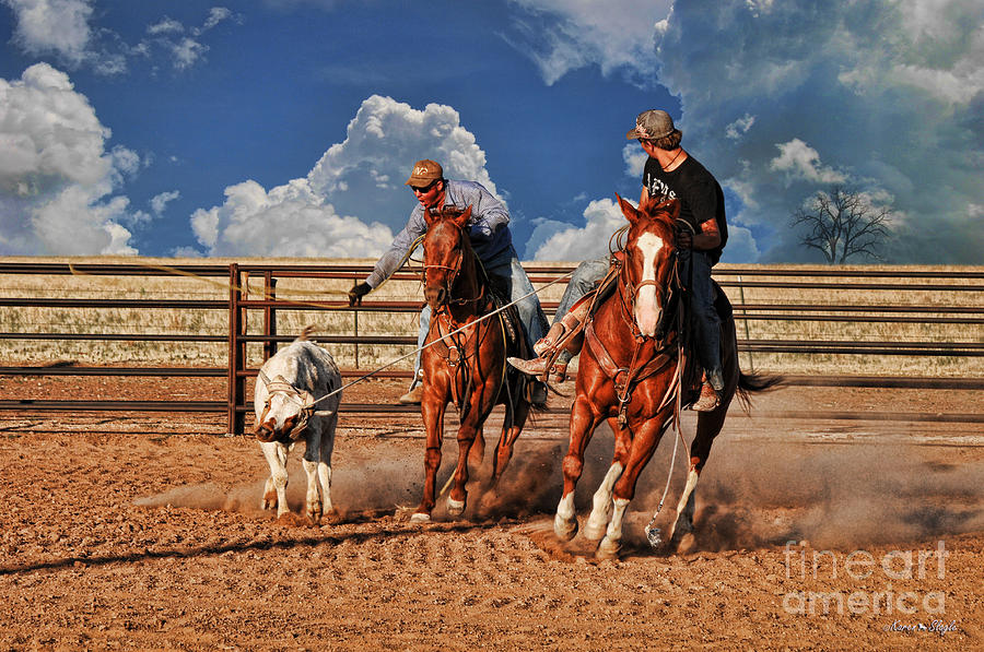 Cowboys Toys Photograph