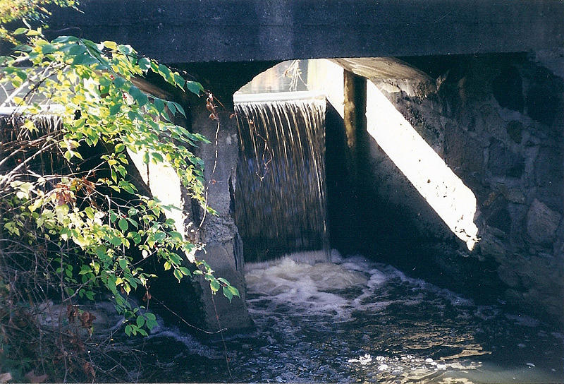 Cranbrook Waterfall Photograph