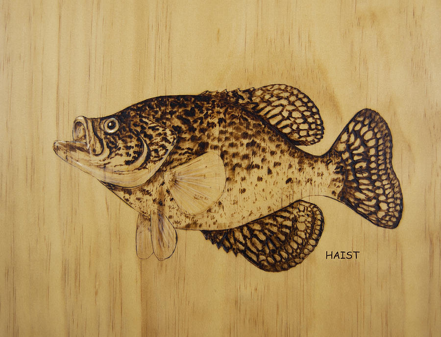 Crappie Pyrography