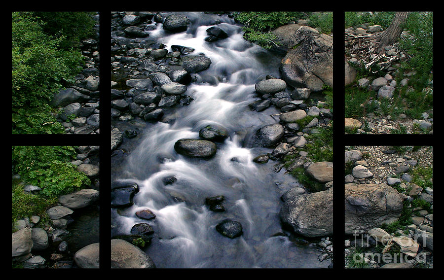 Creek Flow Polyptych Digital Art