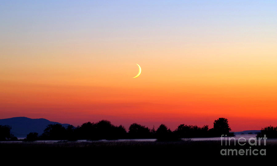 Crescent Moon At Sunset  - Lummi Bay Photograph