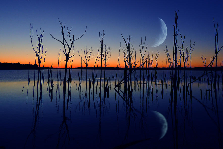 Crescent Moon Reflection Photograph