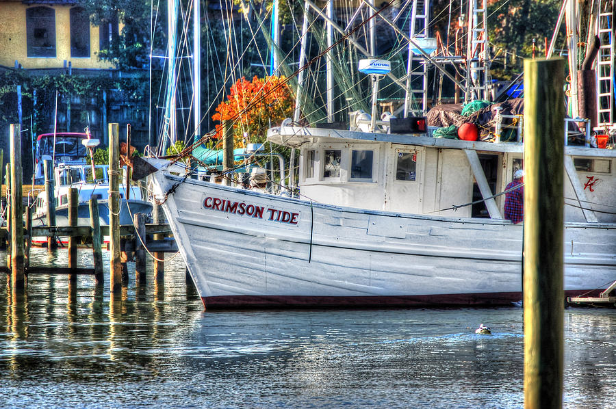 Alabama Painting - Crimson Tide In Harbor by Michael Thomas