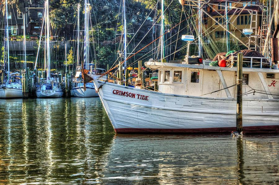 Water Photograph - Crimson Tide In The Sunshine by Michael Thomas