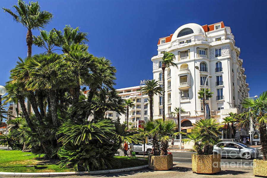 Croisette Promenade In Cannes Photograph