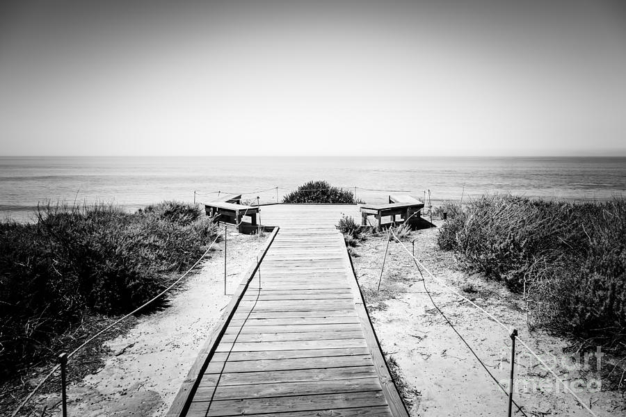 Crystal Cove Overlook Black And White Picture Photograph