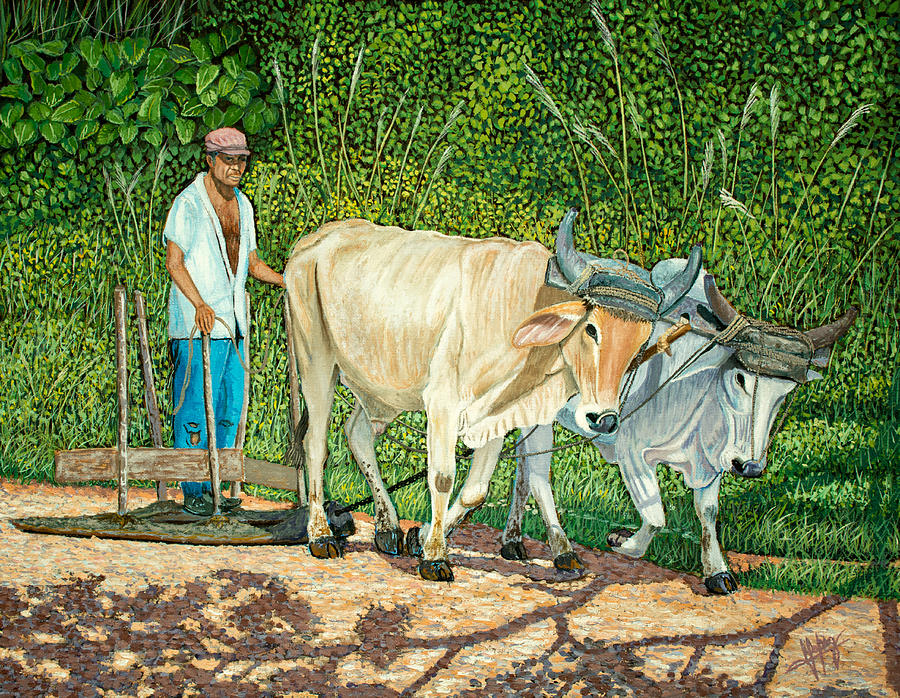 Cuban Countryman Painting